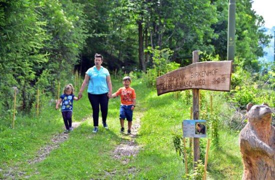 sentiero dei frutti di bosco -06